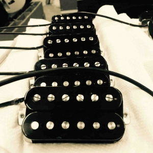 Custom Friedman Pickups